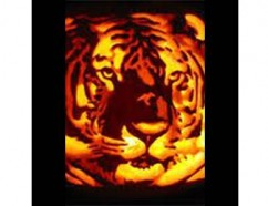 Princeton Halloween tiger image. Photo courtesy of the Office of Communications.