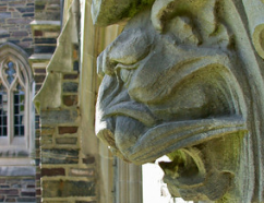 Photo of tiger gargoyle. Photo courtesy of the Office of Communications.