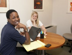 Advising in the Writing Center.